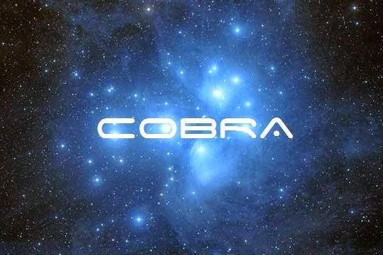 http://4.bp.blogspot.com/-o7xGBGFBkIA/VKfzDQPFYKI/AAAAAAAACGk/2DG7HKjvdeg/s1600/CobraPl.jpg